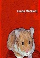 Non sono un topo